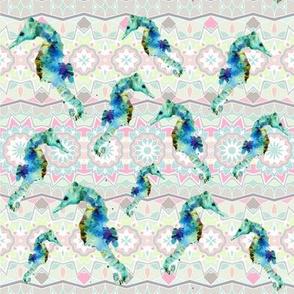 Dreaming of Seahorses