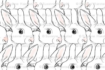 White Rabbits Tiny