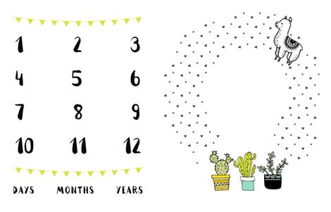 Llama and Cactus Milestone fabric by littlelambandivy on Spoonflower - custom fabric