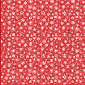 3_Kittensextra_red-kit