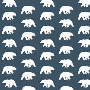 Bear Hike // Slate