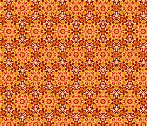 IMG_0234 fabric by bahrsteads on Spoonflower - custom fabric