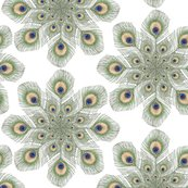 Rrrrrrpeacock_feather_mandala_shop_thumb