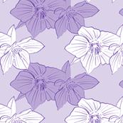 Hellebores in violet ink