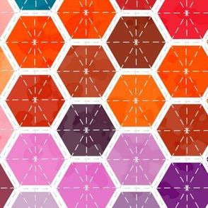 color chart hexagon quilt