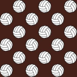 One Inch Black and White Volleyballs on Brown