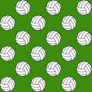 One Inch Black and White Volleyballs on Apple Green