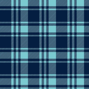 fall plaid || navy & light teal