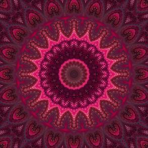 Mandala . Raspberry cocktail .