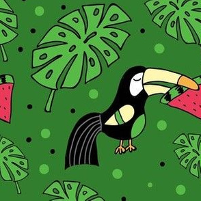 Toucan-watermelon