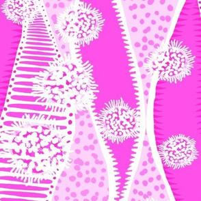 Plankton & Seaweed Pitaya Pink 300