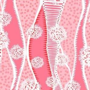 Plankton & Seaweed Guava Pink 600