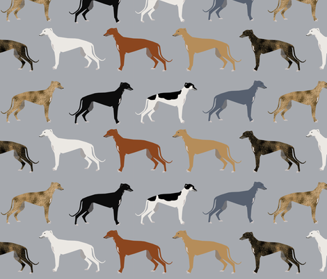 greyhounds fabric larger version - dogs greyhound coats colors fabric fabric by petfriendly on Spoonflower - custom fabric