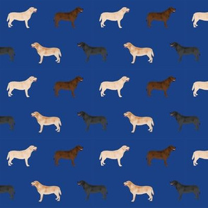 labrador retriever dog fabric dogs design - royal blue