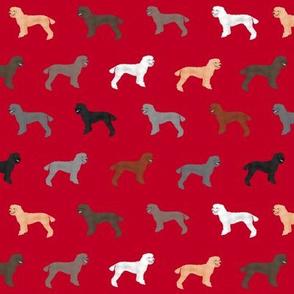 poodle dog fabric poodles dog design - red
