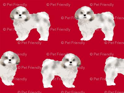 shih tzu fabric dog fabrics shih tsu dogs - reed