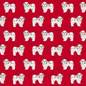 shih tzu fabric dog fabrics shih tsu dogs - reed