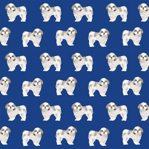 shih tzu fabric dog fabrics shih tsu dogs - royal blue
