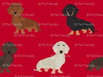 dachshund dog fabric doxie dogs fabric - red