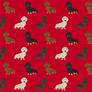 dachshund dog fabric doxie dogs fabric - red
