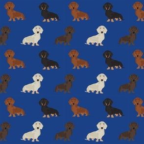 dachshund dog fabric doxie dogs fabric - royal blue