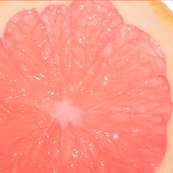 Grapefruit_shop_thumb