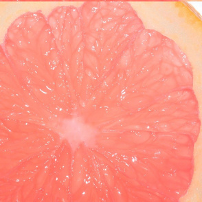 Snowcatcher Grapefruit