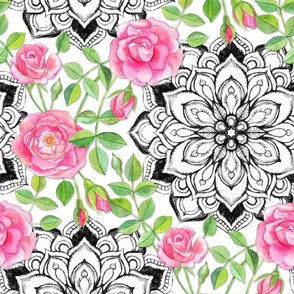 Pink Roses and Mandalas on White
