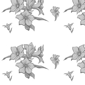 Flower - White and Gray