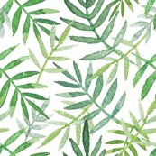 Rpalmleaves-green_shop_thumb