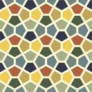 06230314 : S43C pentagon 8 : bayeuxpalette