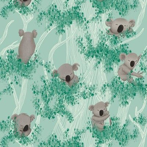 Sleeping Koala Bears on a Eucalyptus Trees and Mint Background