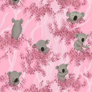 Sleeping Koala Bears on pink Eucalyptus Trees and Background