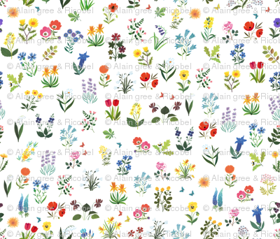 Beautiful flowers from 60s vintage illustration  - Alain Gree