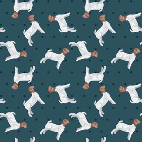 Polka Dot Boer Goat - Blue