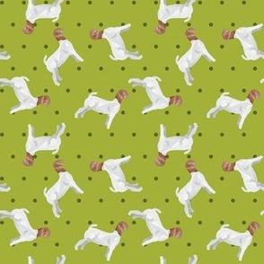 Polka Dot Boer Goat - Lime