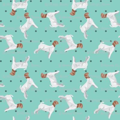Polka Dot Boer Goat - Teal