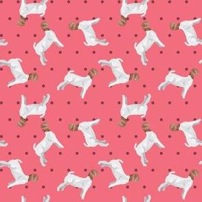 Polka Dot Boer Goat - Pink