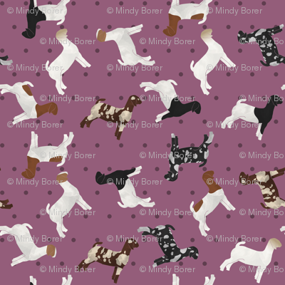 Polka Dot Boer Goat - Purple