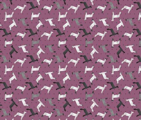 Sheep_mixed_breed_lilac_polkadot_shop_preview
