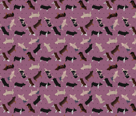 Polka Dot Belted Pig - Purple fabric by thecraftyblackbird on Spoonflower - custom fabric