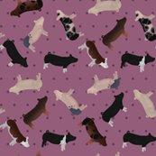 Pig_mixed_breed_lilac_polkadot_shop_thumb