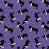 Polka Dot Belted Pig - Purple
