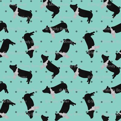 Polka Dot Belted Pig - Teal