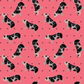 Polka Dot Spotted Pig - Pink