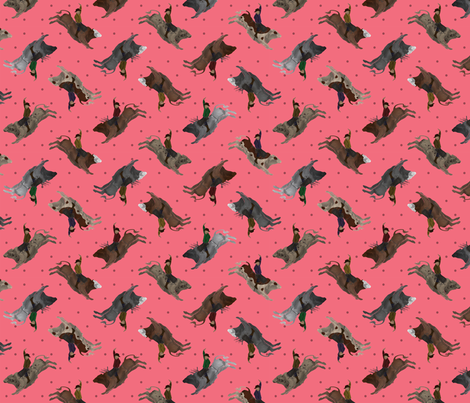 Rodeo Bull Riders - Pink fabric by thecraftyblackbird on Spoonflower - custom fabric