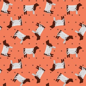 Polka Dot Shorthorn Steer - Coral