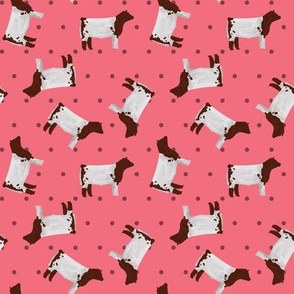Polka Dot Shorthorn Steer - Pink