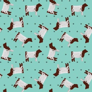 Polka Dot Shorthorn Steer - Teal