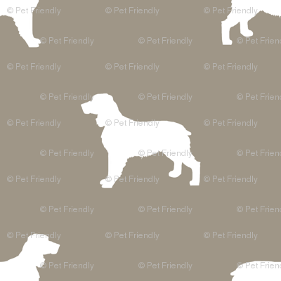 English Springer Spaniel dog silhouette med brown